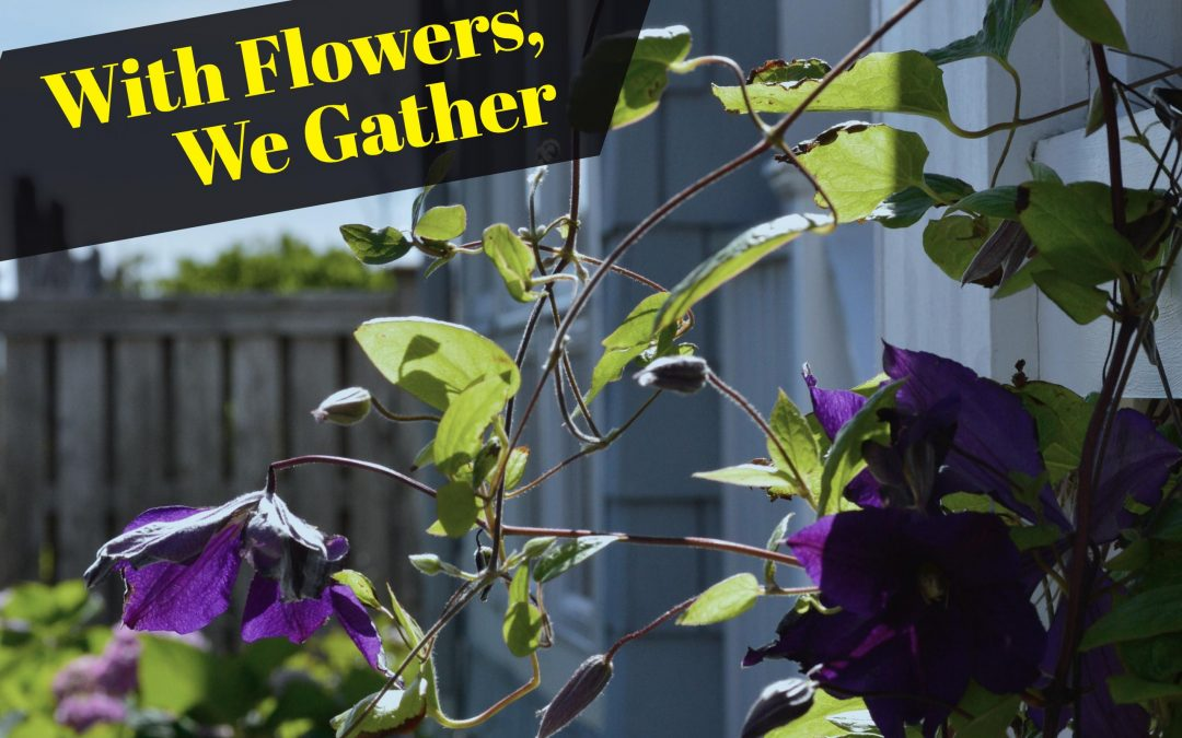 With Flowers, We Gather – 11.2.16