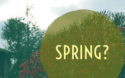 Spring? – 3.2.17