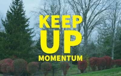 Keep Up Momentum – 6.1.17