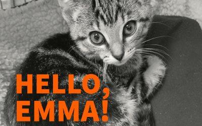 Hello, Emma! – 7.1.17